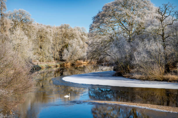 River Teviot on a Frosty Morning stock photo
