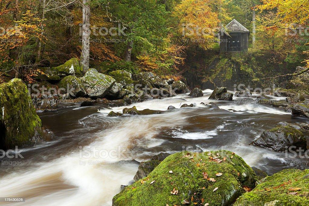 River through autumn colours at the Hermitage, Scotland stock photo