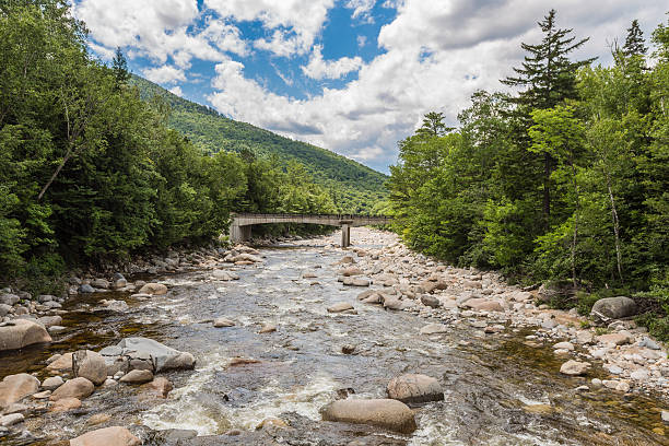 River through forest  White Mountains, bridge in background River through forest near the White Mountains, a bridge in background mount washington new hampshire stock pictures, royalty-free photos & images