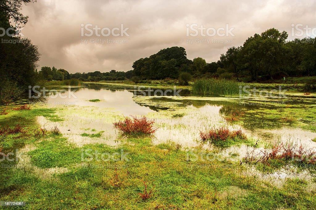 river tietar royalty-free stock photo