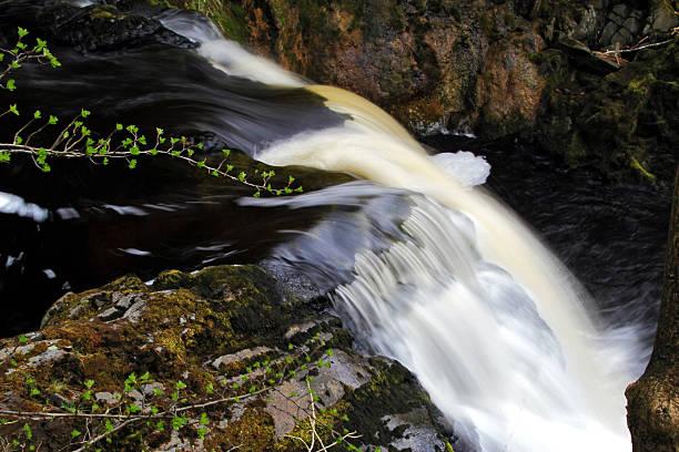 River Twiss Waterfall stock photo