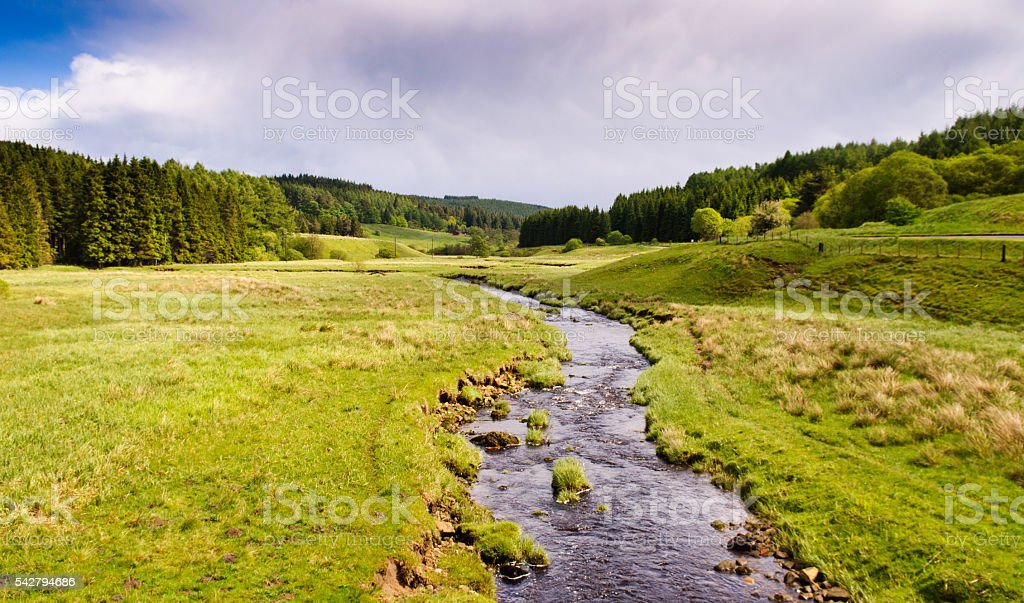 River Tyne in Kielder Forest stock photo