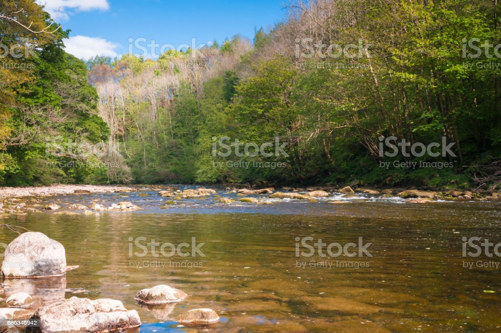 River Ure upstream stock photo