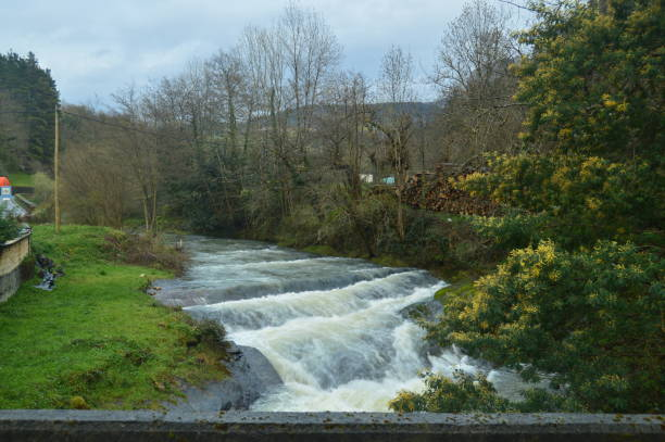 Fluss sehr Embravecido durch die Regenfälle In den natürlichen Park Gorbeia. Flusslandschaften Natur. – Foto