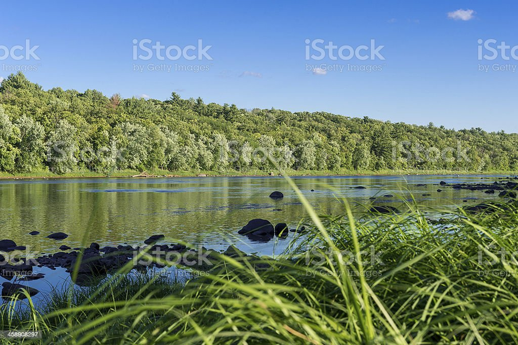 River view through the reeds stock photo
