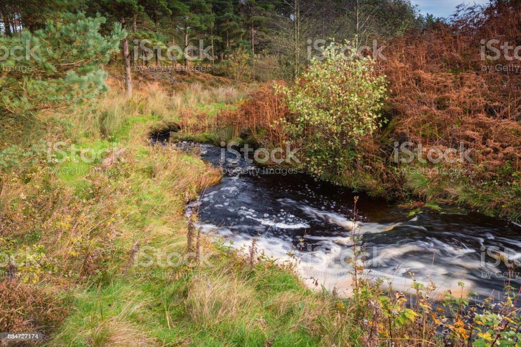 River Wansbeck leaves Sweethope Lough stock photo