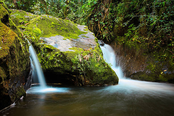 river waterfalls in the jungles with green mountains, cocora val stock photo
