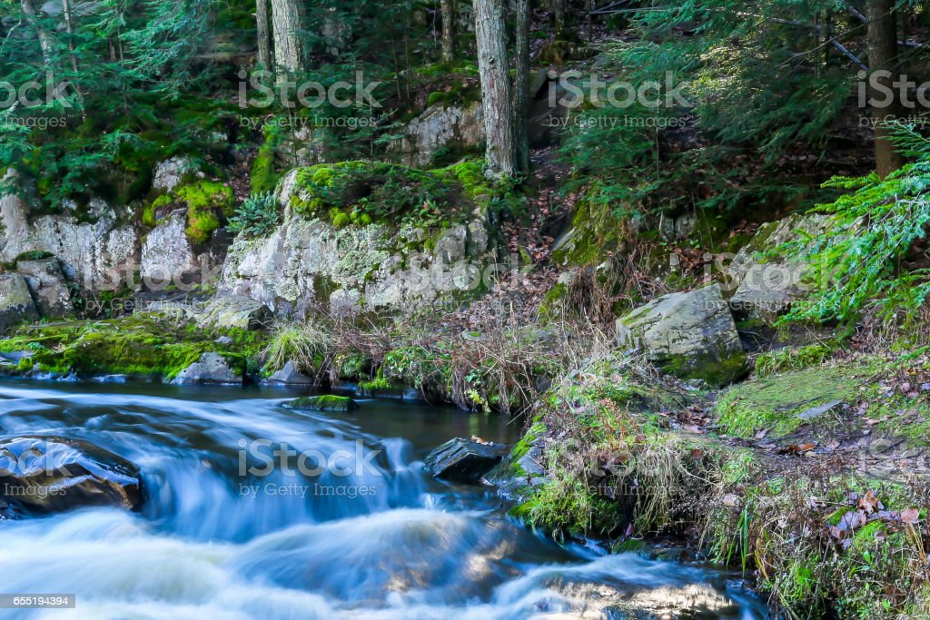 River with lush green foliage on its bank stock photo
