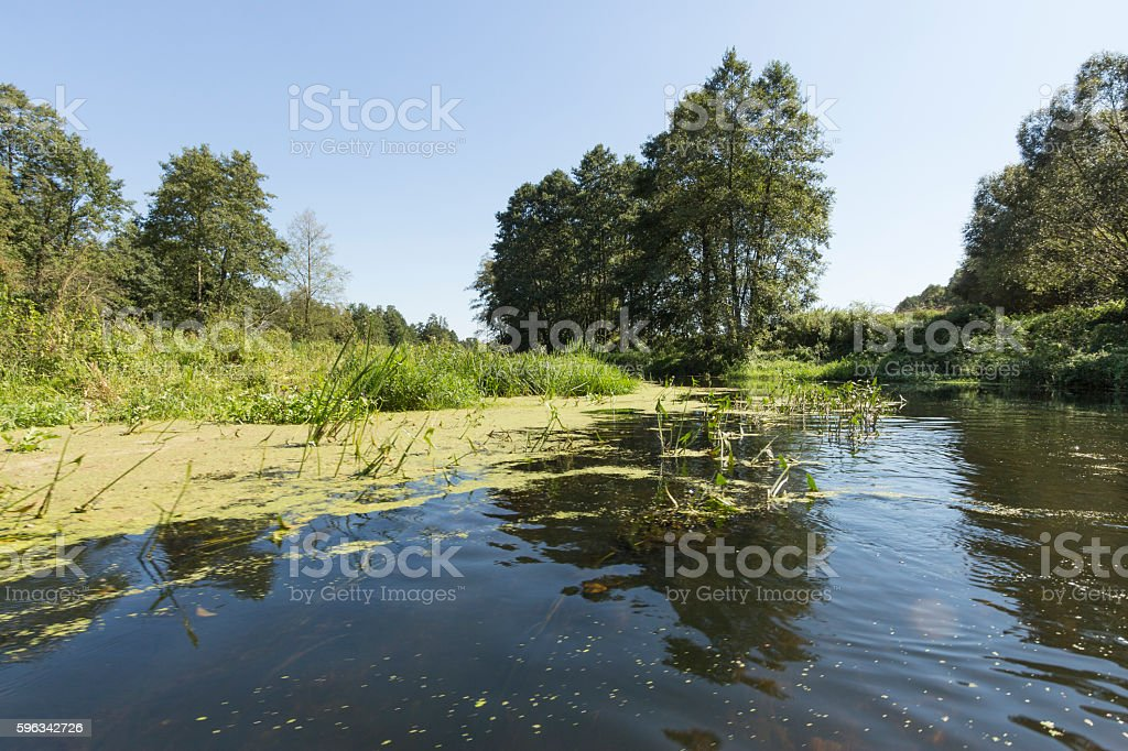 River Wkra, Poland royalty-free stock photo