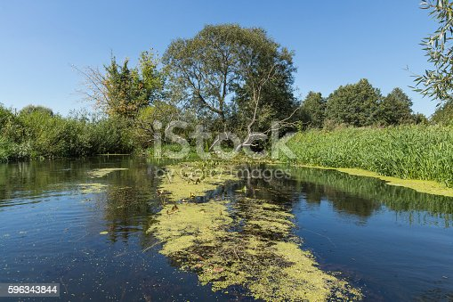 River Wkra Poland Stock Photo & More Pictures of Blue