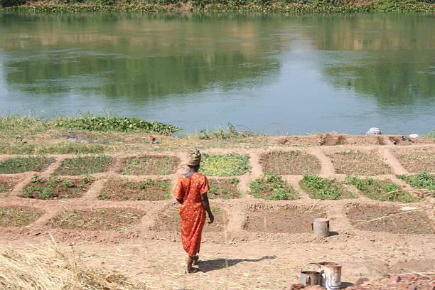 River woman stock photo