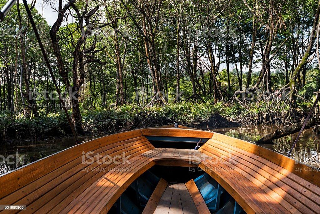 川岸には、ジャングルのボルネオ ストックフォト