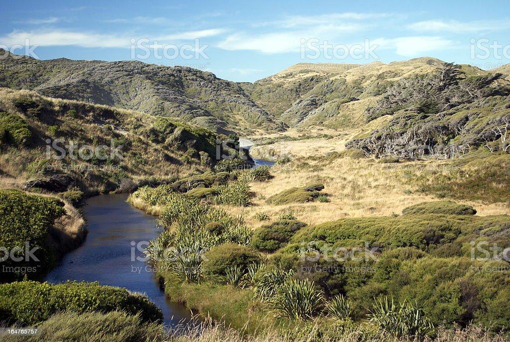 Riverscape, Kahurangi National Park, Golden Bay, NZ royalty-free stock photo