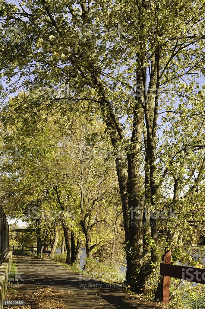 Promenez-vous au bord de la rivière en automne - Photo
