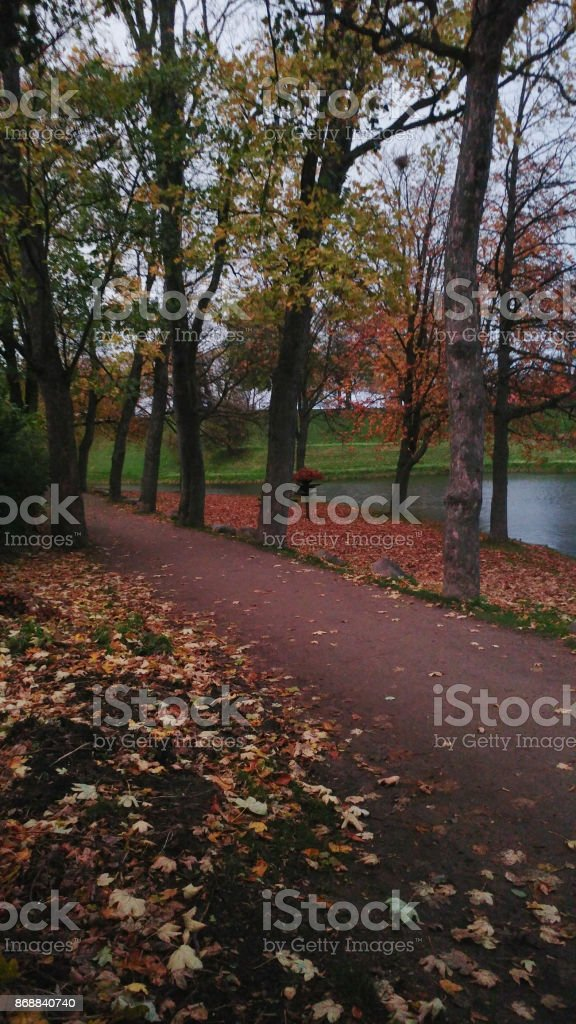 Riverside Footpath in the woods stock photo