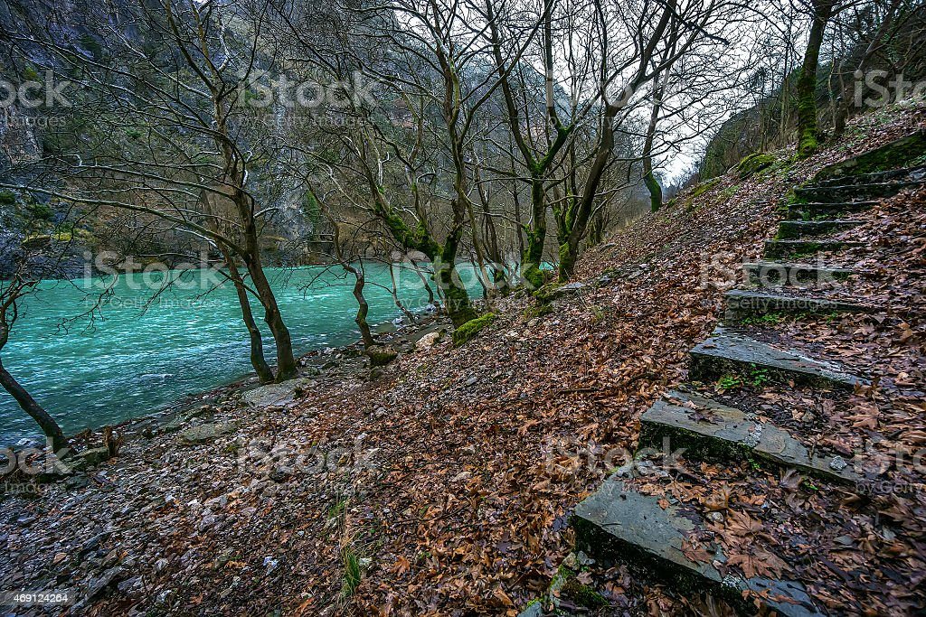 Riverside from Aoos river in wintertime with fallen planetree leafs stock photo
