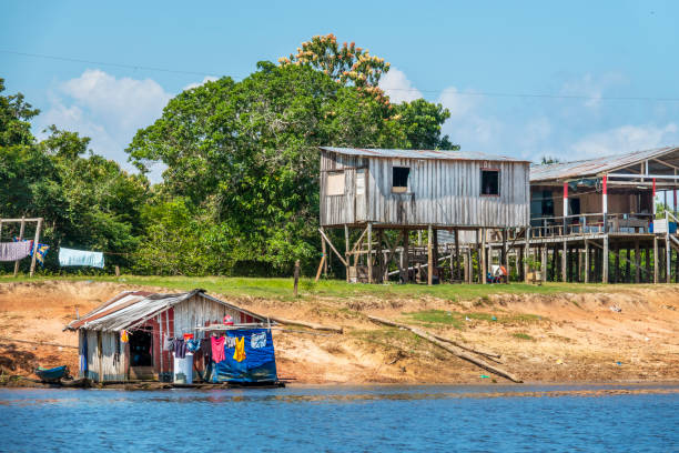 Riverside population in the Amazon Region Houses at the border of Negro River, near Manaus, capital of the State of Amazonas rio negro brazil stock pictures, royalty-free photos & images