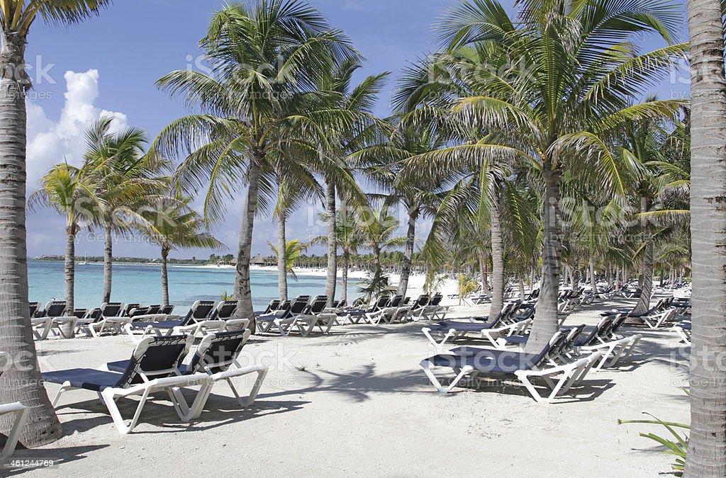 Riviera Maya Mexico Beach royalty-free stock photo