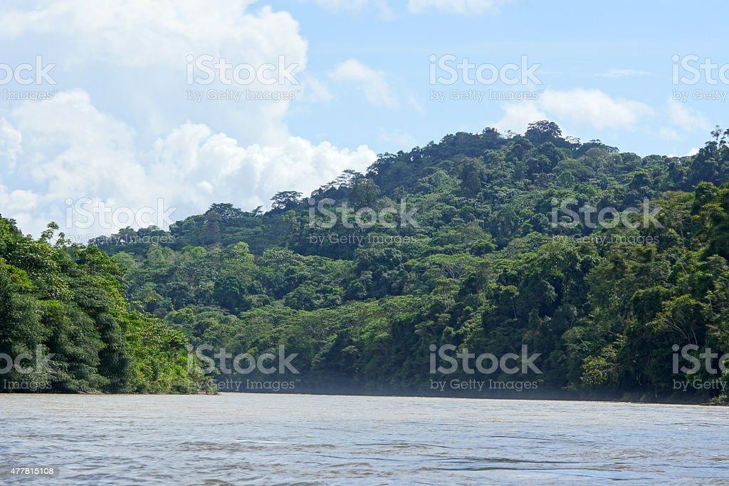 Río Napo stock photo
