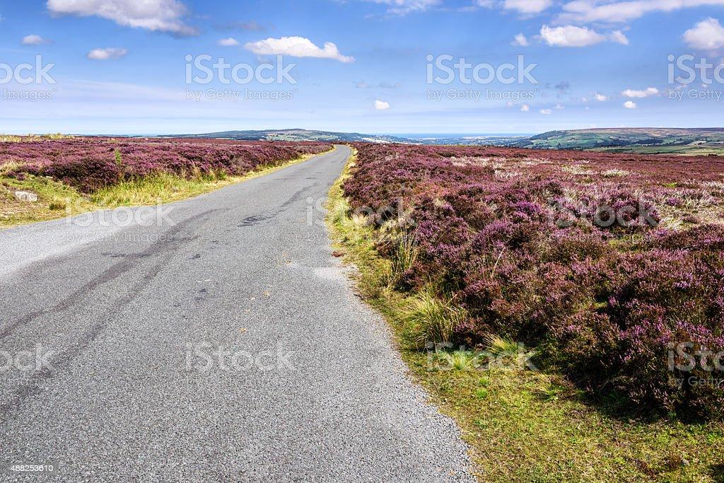 Road across Egton High Moor in North Yorkshire, England stock photo