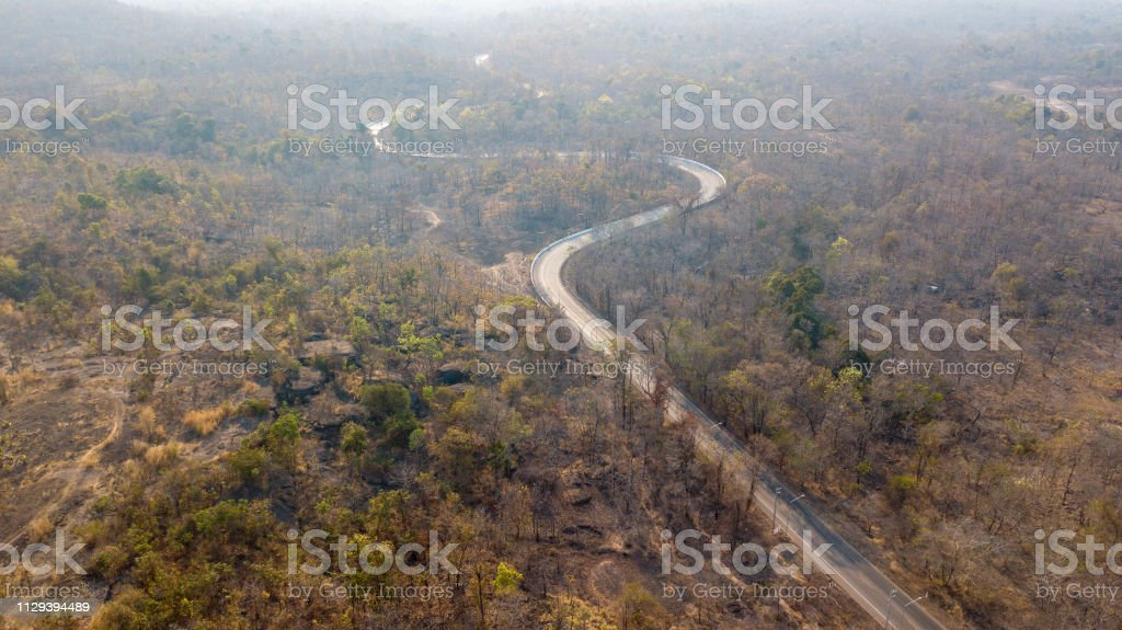 Road aerial view in forest above shoot with Drone