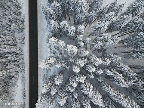 1066508460 istock photo Road and snow covered spruce trees from directly above 1125451442