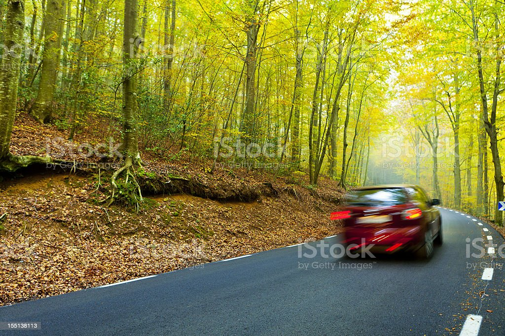 Road at a beautiful forest in autumn stock photo
