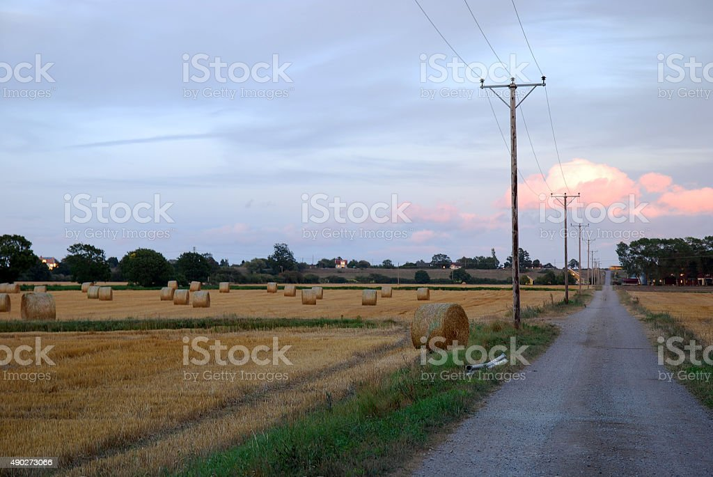 Road at harvested field stock photo