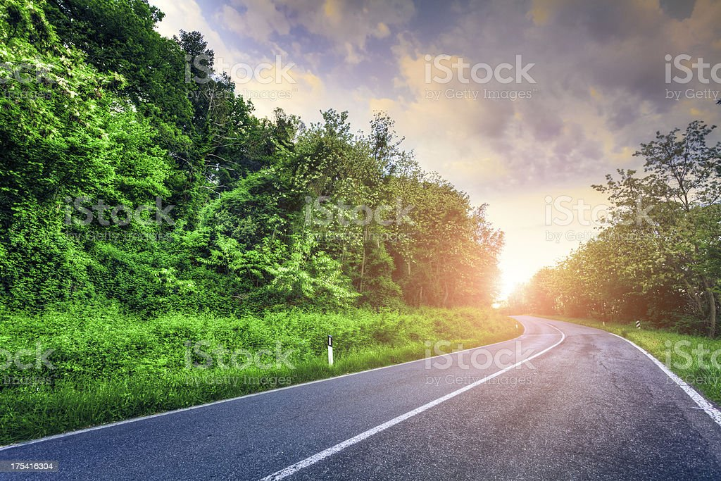 Road at Sunrise royalty-free stock photo