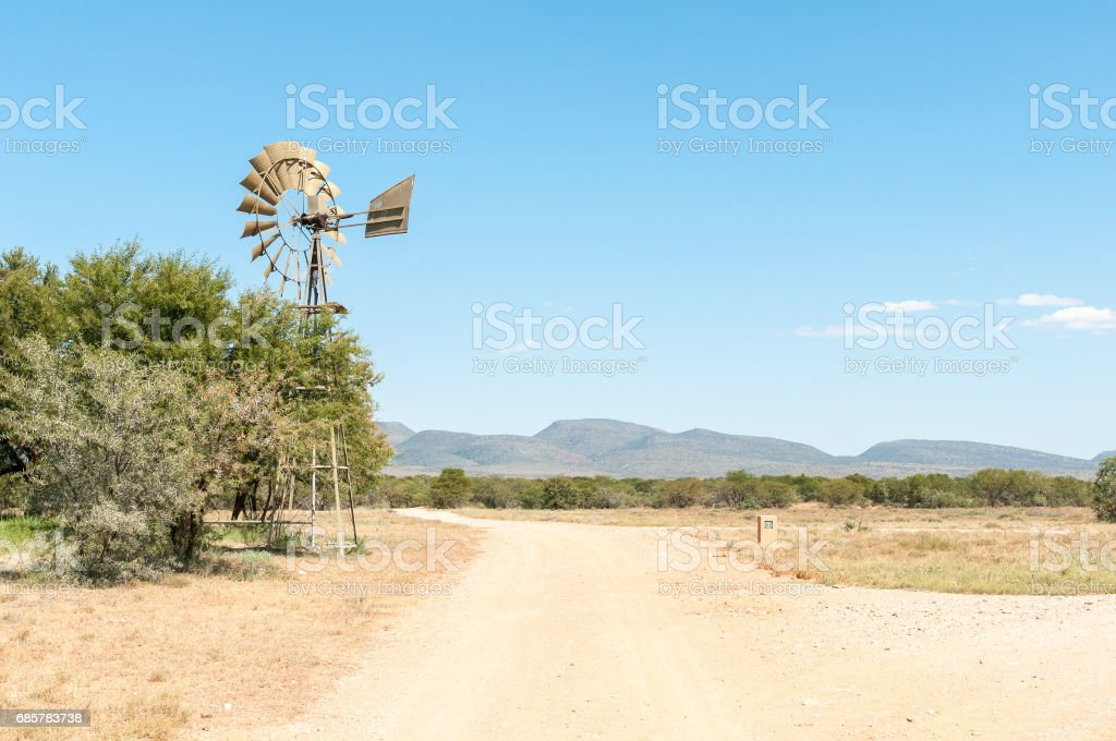 Road between Acacia trees in the Camdeboo National Park royalty-free stock photo