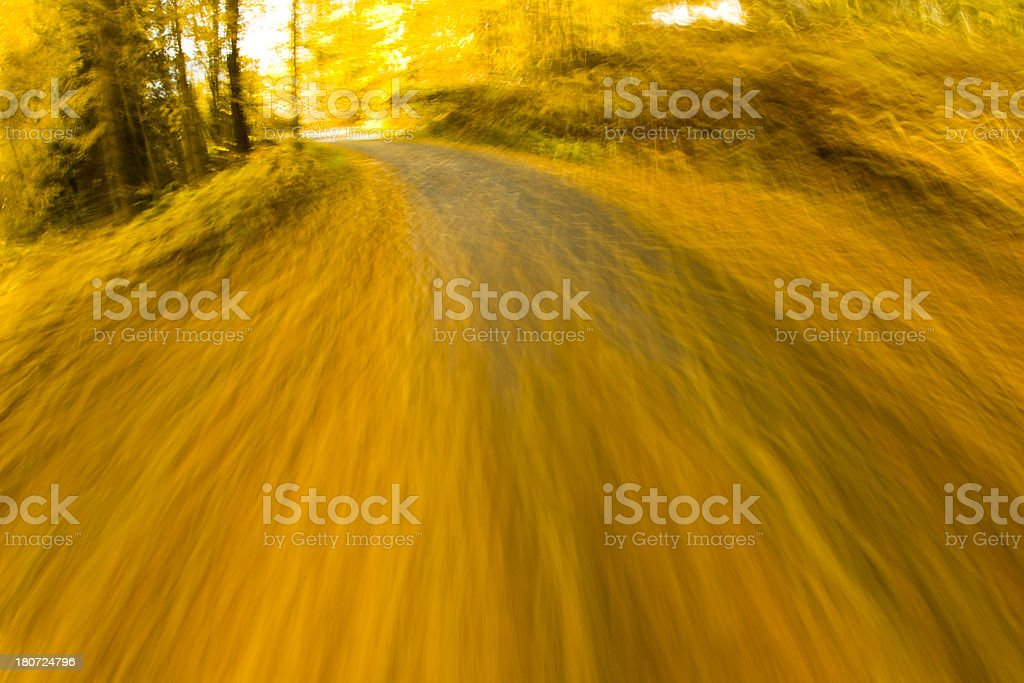 Road Bicycling royalty-free stock photo