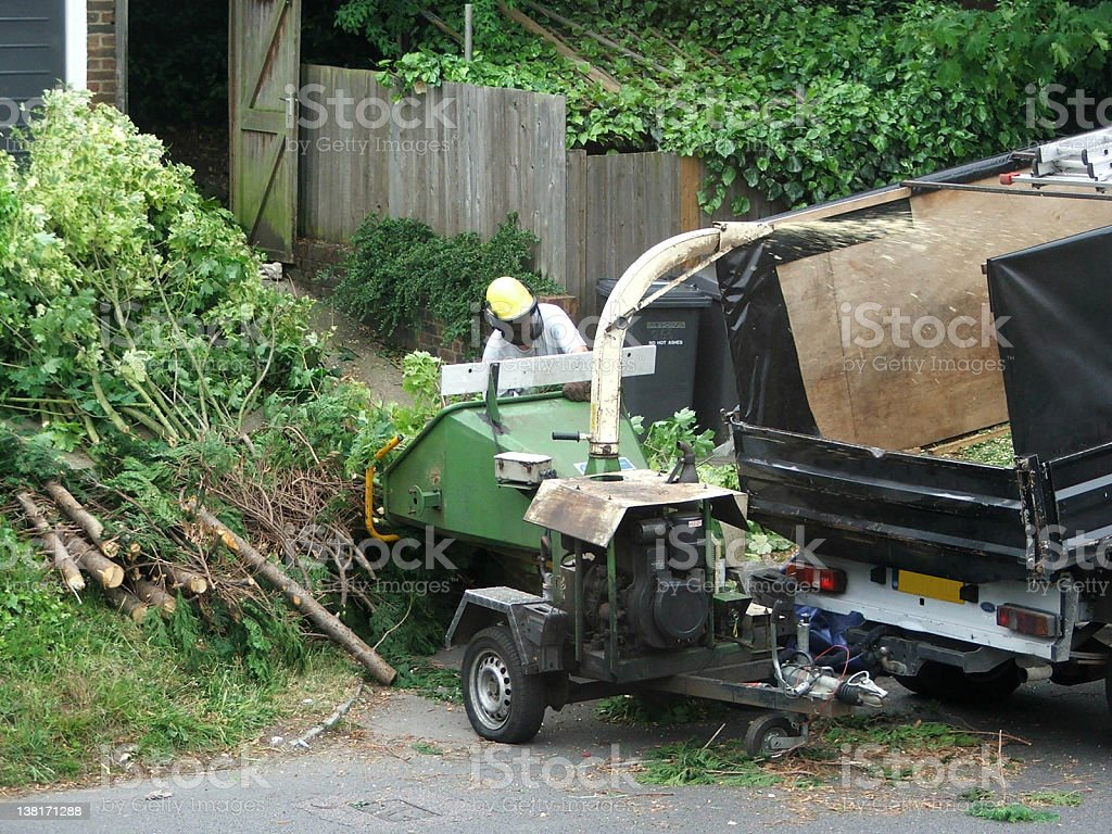 Road cleaning - cutting tree branches stock photo