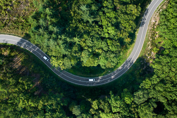 Road curve in the forest - aerial view stock photo