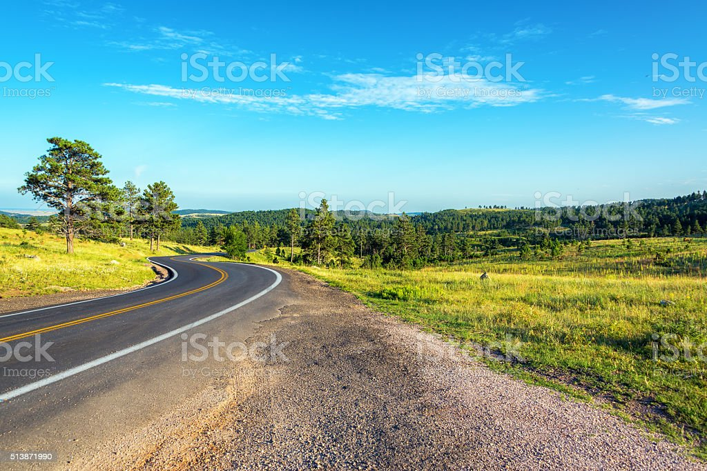 Road Curving through the Black Hills stock photo