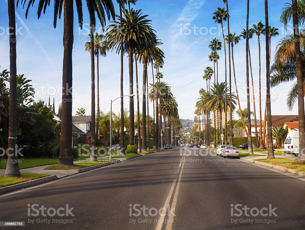 Road in a Beverly Hills neighborhood stock photo