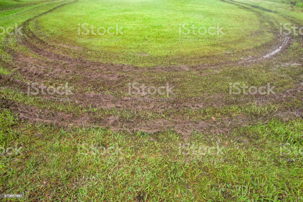 Road in a green field, Car track through a grass park stock photo