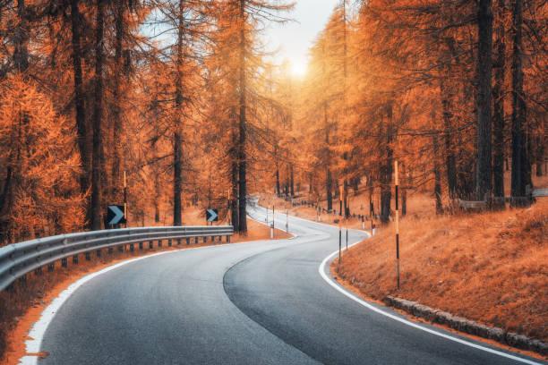 Straße im herbstlichen Wald bei Sonnenuntergang. Schöne kurvenreiche Bergstrasse, Bäume mit rotem Laub und orange Sonnenlicht. Landschaft mit leeren Asphalt Straße durch den Wald im Herbst. Transport. Saisonale – Foto