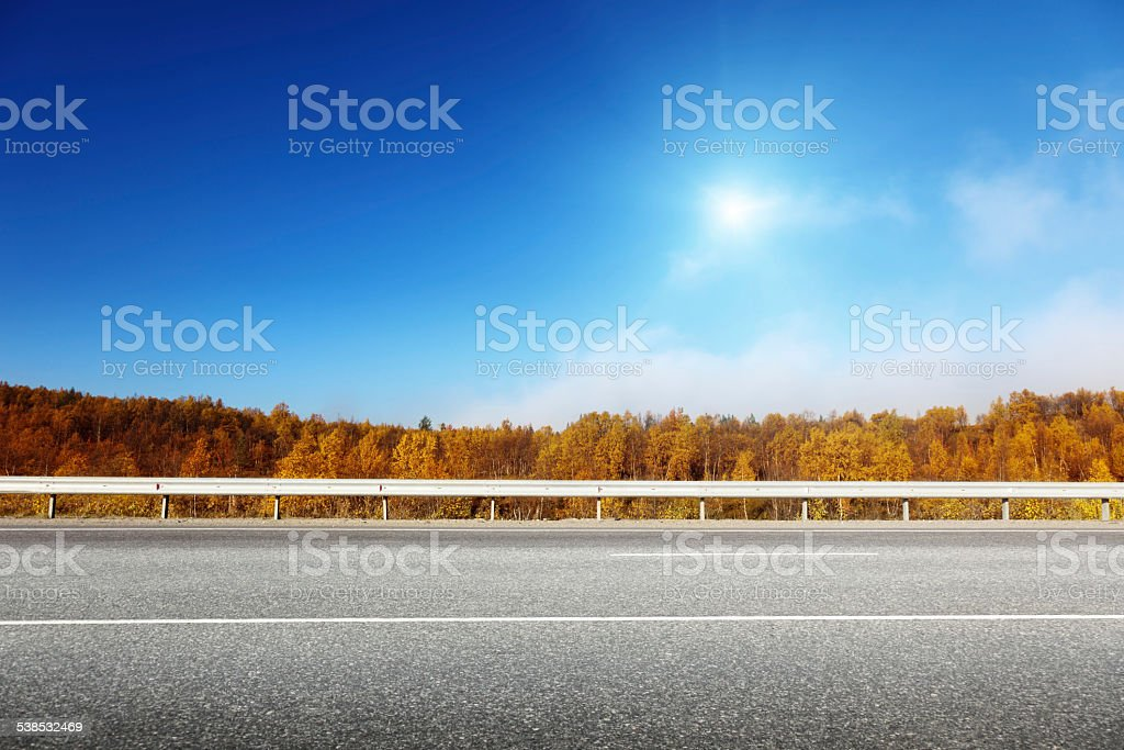 road in autumn forest stock photo