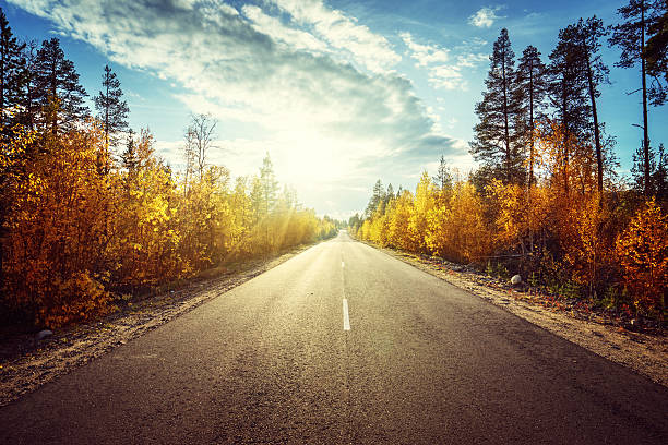 road in autumn  mountains - vanishing point stock pictures, royalty-free photos & images