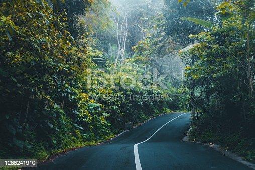 istock Road in Bali 1288241910