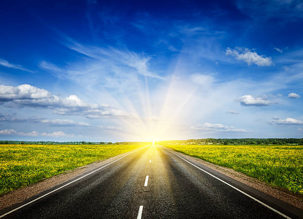 Road in blooming spring meadow Travel concept background - road in blooming spring meadow on sunset sunny stock pictures, royalty-free photos & images
