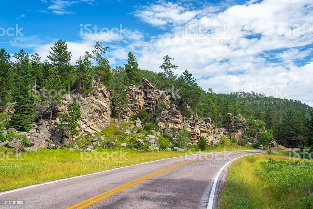 Road in Custer State Park stock photo