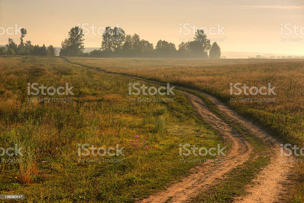 Road in fields at sunrise royalty-free stock photo