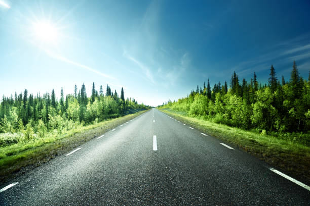 road in forest, sweden - straight stock photos and pictures