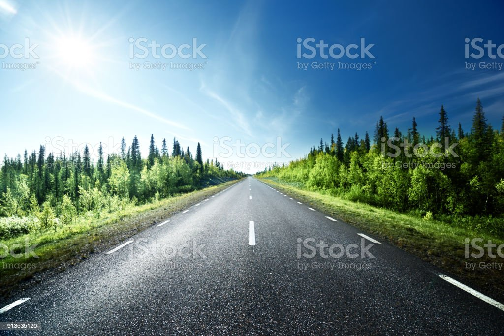Road in forest, Sweden stock photo