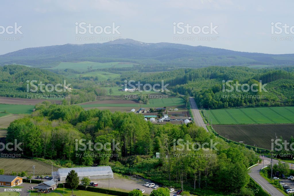 Road in Hokkaido with the mountain on the background stock photo