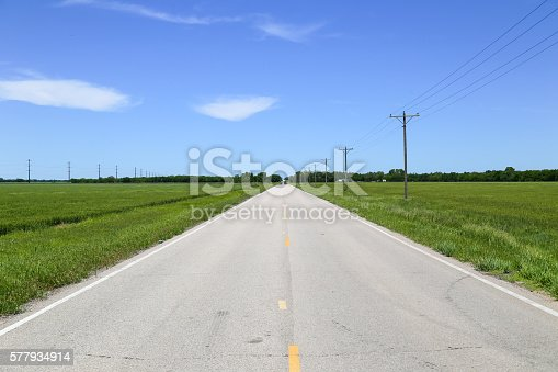 Road near Halstead in Kansas, USA, with green fields or grassland and utility poles to each side.