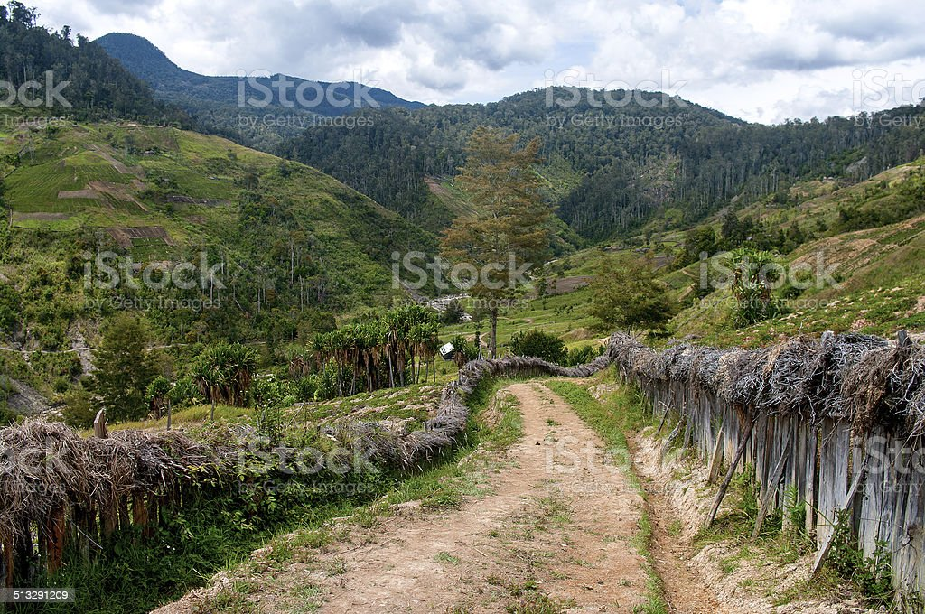 Road in mountains, stock photo