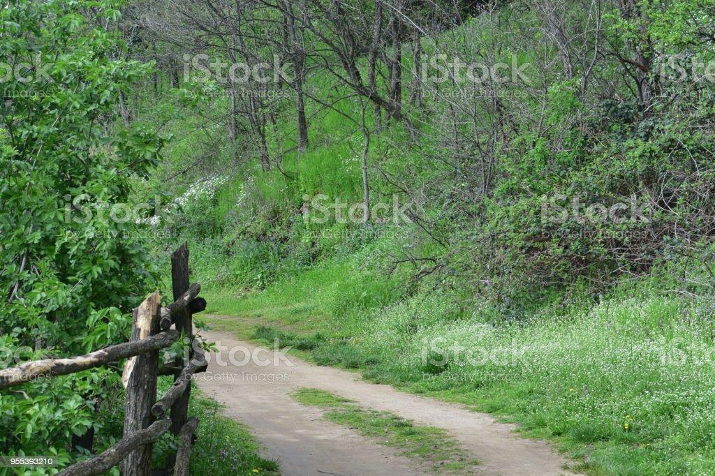 Road in mountains - Zbiór zdjęć royalty-free (Bez ludzi)