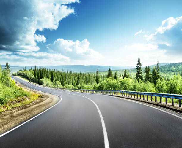 road in north forest road in north mountain forest horizon over land stock pictures, royalty-free photos & images